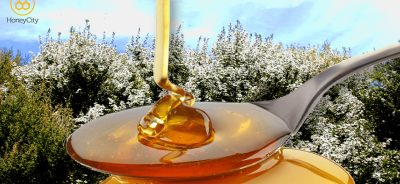 如何正確食用麥盧卡蜂蜜 How to eat Manuka Honey correctly